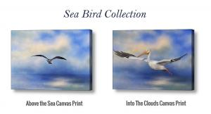 Sea Bird Collection