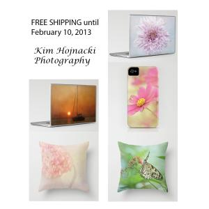 Free Shipping for Laptop Skins, Pillows, Iphone Cases